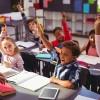 Écoles primaires & Association de parents d'élèves (APE)