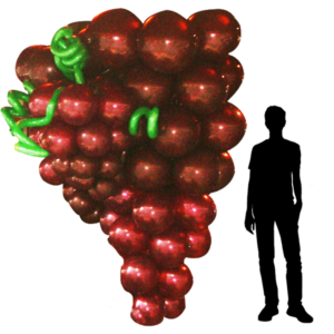 Grappe de raisin en ballon : image de base