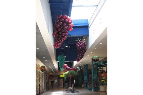 Grappe de raisin en ballon : grappe dans une galerie