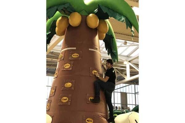 mur d'escalade cocotier gonflable géant : il monte