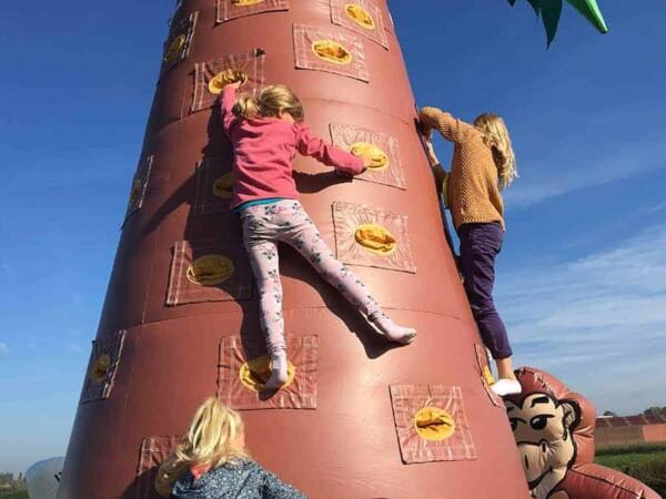 mur d'escalade cocotier gonflable géant : 2 enfants