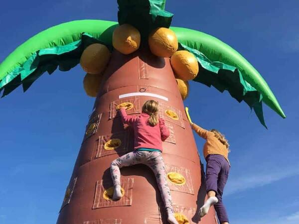 mur d'escalade cocotier gonflable géant : tout en haut
