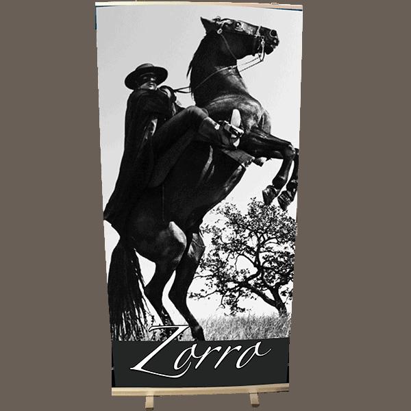 Roll Up 100 x 200 Zorro