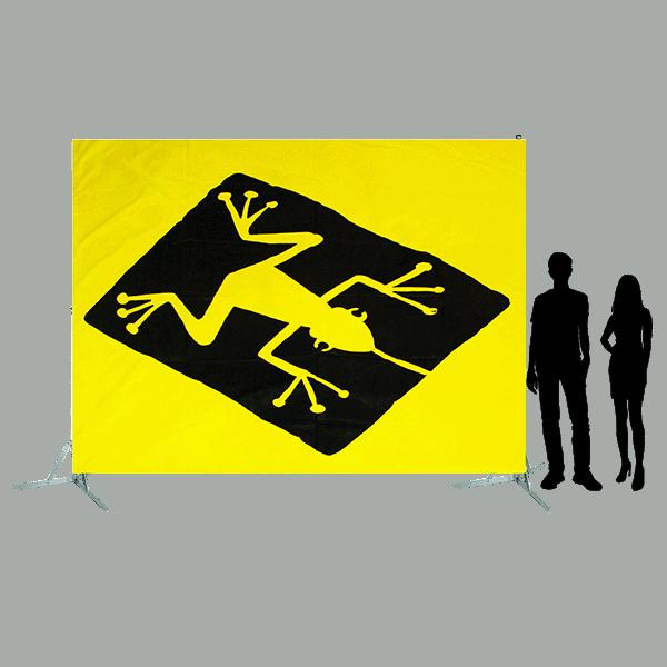 Toile 35 - grenouille brésilienne