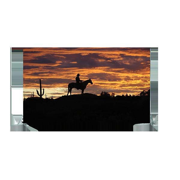 Toile n°13 - 4m00 x 2m80 - Cowboy Solitaire copie